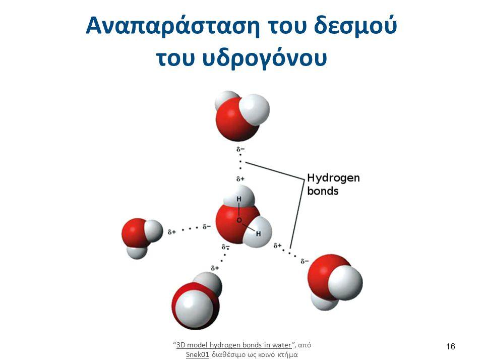 """Αναπαράσταση του δεσμού του υδρογόνου """"3D model hydrogen bonds in water"""", από Snek01 διαθέσιμο ως κοινό κτήμα3D model hydrogen bonds in water Snek01 1"""