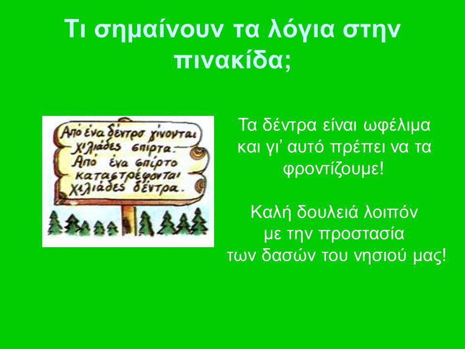 Τι σημαίνουν τα λόγια στην πινακίδα; Τα δέντρα είναι ωφέλιμα και γι' αυτό πρέπει να τα φροντίζουμε! Καλή δουλειά λοιπόν με την προστασία των δασών του