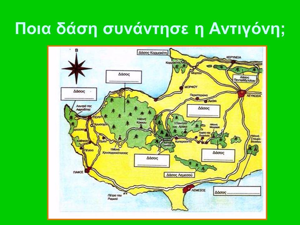 Ποια δάση συνάντησε η Αντιγόνη;