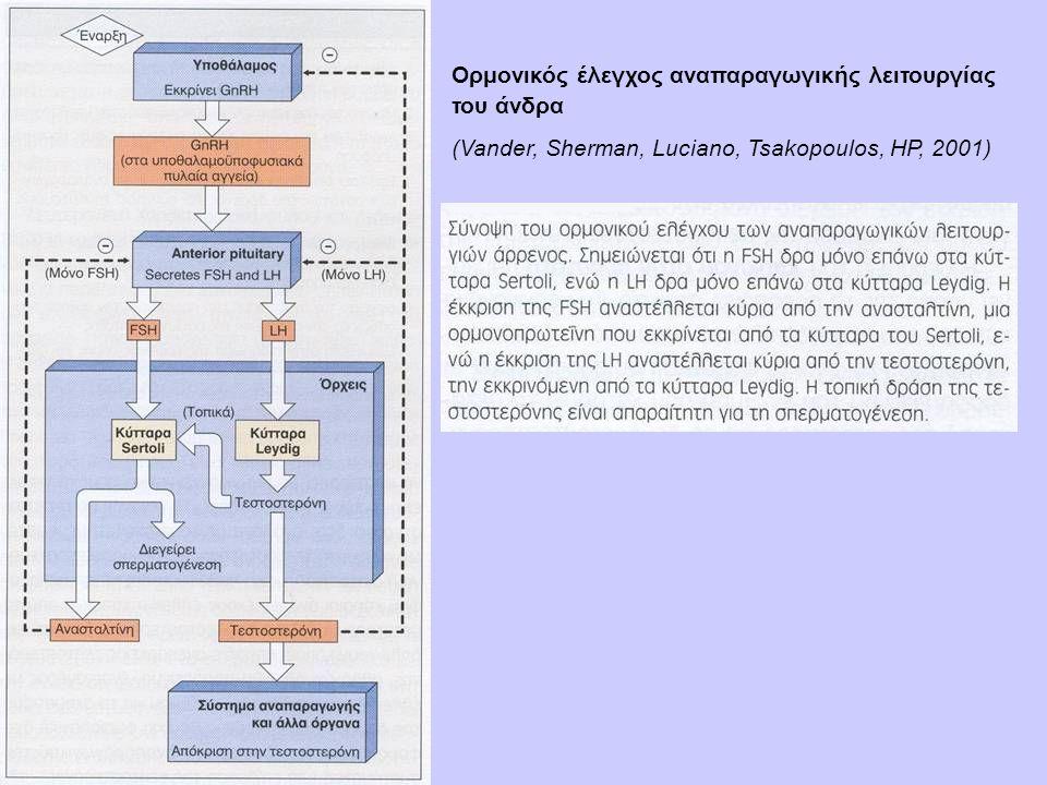 Ορμονικός έλεγχος αναπαραγωγικής λειτουργίας του άνδρα (Vander, Sherman, Luciano, Tsakopoulos, HP, 2001)