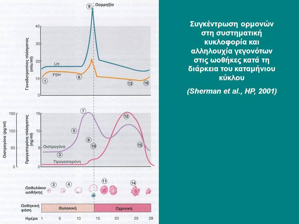 Συγκέντρωση ορμονών στη συστηματική κυκλοφορία και αλληλουχία γεγονότων στις ωοθήκες κατά τη διάρκεια του καταμήνιου κύκλου (Sherman et al., HP, 2001)