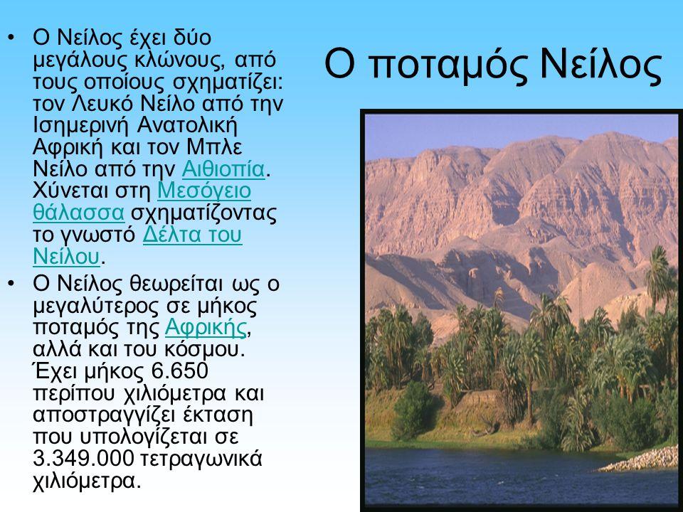Ο ποταμός Νείλος Ο Νείλος έχει δύο μεγάλους κλώνους, από τους οποίους σχηματίζει: τον Λευκό Νείλο από την Ισημερινή Ανατολική Αφρική και τον Μπλε Νείλ