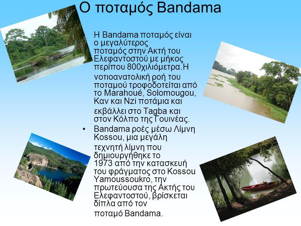 Ο ποταμός Bandama Η Bandama ποταμός είναι ο μεγαλύτερος ποταμός στην Ακτή του Ελεφαντοστού με μήκος περίπου 800χιλιόμετρα.Η νοτιοανατολική ροή του ποτ