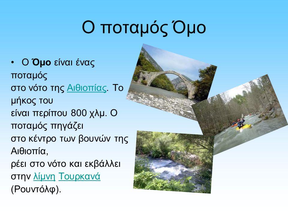 O ποταμός Όμο Ο Όμο είναι ένας ποταμός στο νότο της Αιθιοπίας. Το μήκος του είναι περίπου 800 χλμ. Ο ποταμός πηγάζει στο κέντρο των βουνών της Αιθιοπί