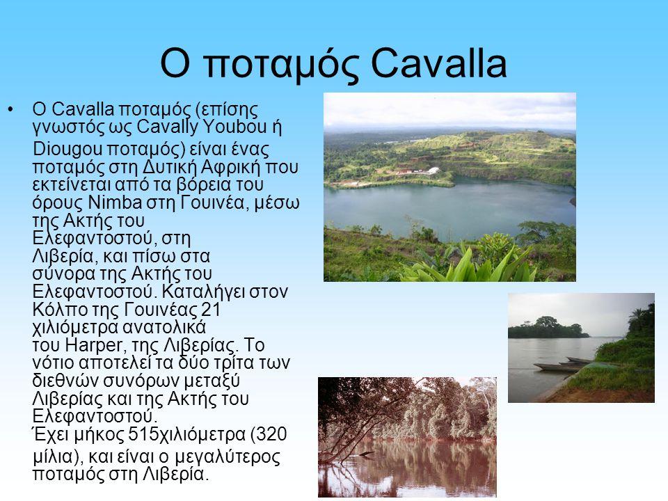 Ο ποταμός Cavalla Ο Cavalla ποταμός (επίσης γνωστός ως Cavally Youbou ή Diougou ποταμός) είναι ένας ποταμός στη Δυτική Αφρική που εκτείνεται από τα βό