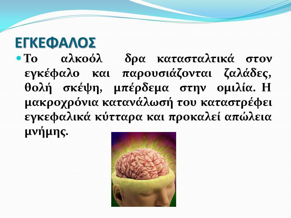 ΕΓΚΕΦΑΛΟΣ Το αλκοόλ δρα κατασταλτικά στον εγκέφαλο και παρουσιάζονται ζαλάδες, θολή σκέψη, μπέρδεμα στην ομιλία. Η μακροχρόνια κατανάλωσή του καταστρέ