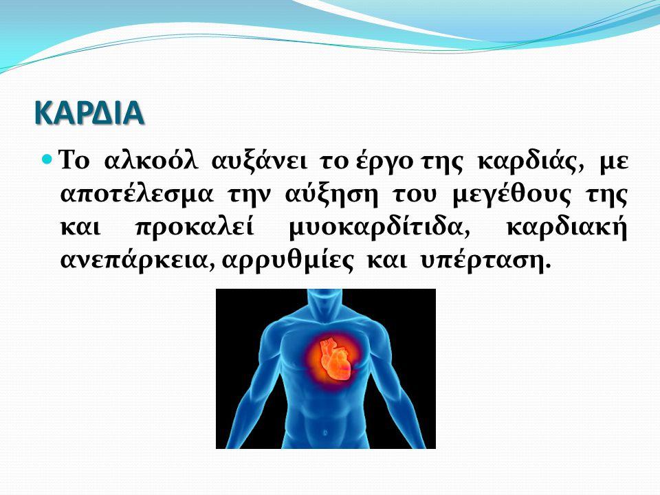 ΚΑΡΔΙΑ Το αλκοόλ αυξάνει το έργο της καρδιάς, με αποτέλεσμα την αύξηση του μεγέθους της και προκαλεί μυοκαρδίτιδα, καρδιακή ανεπάρκεια, αρρυθμίες και