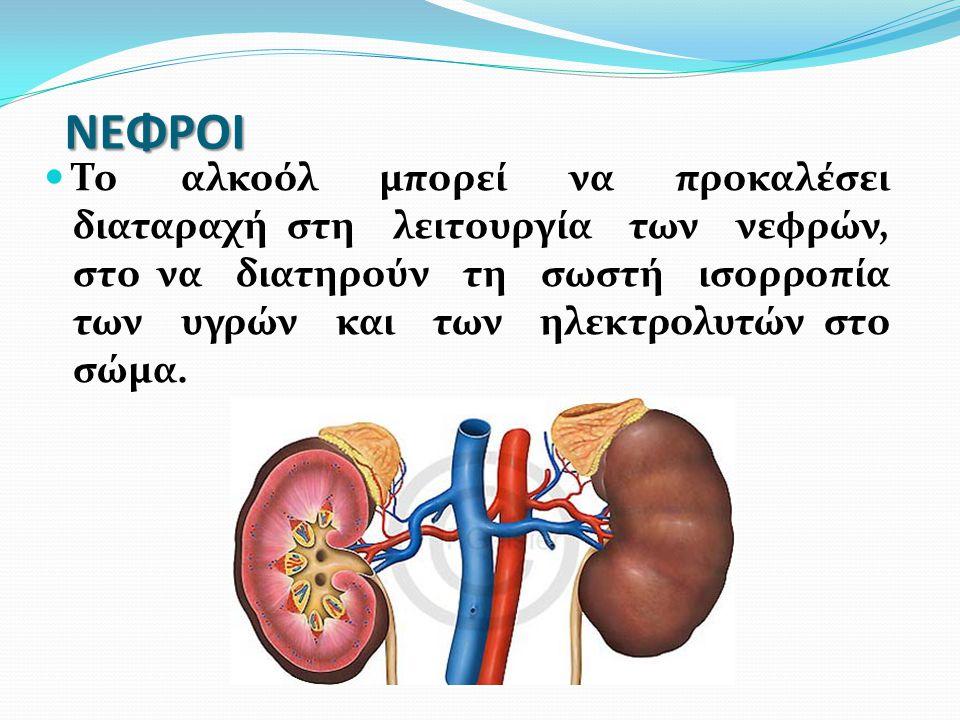 ΝΕΦΡΟΙ Το αλκοόλ μπορεί να προκαλέσει διαταραχή στη λειτουργία των νεφρών, στο να διατηρούν τη σωστή ισορροπία των υγρών και των ηλεκτρολυτών στο σώμα