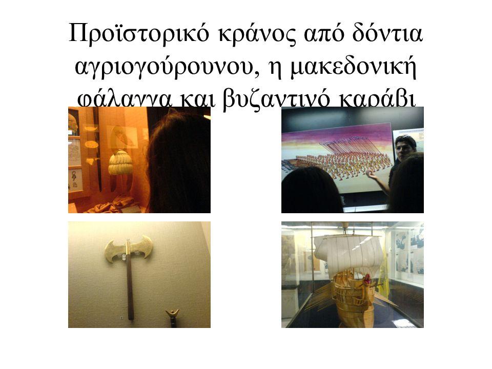 Προϊστορικό κράνος από δόντια αγριογούρουνου, η μακεδονική φάλαγγα και βυζαντινό καράβι
