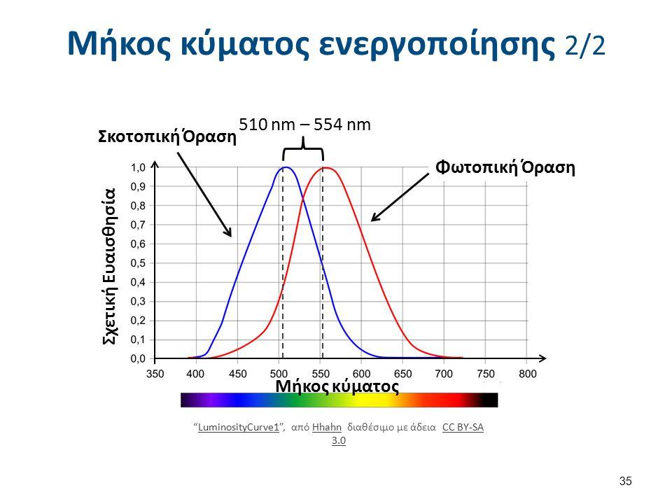 510 nm – 554 nm Σκοτοπική Όραση Φωτοπική Όραση LuminosityCurve1 , από Hhahn διαθέσιμο με άδεια CC BY-SA 3.0LuminosityCurve1HhahnCC BY-SA 3.0 Σχετική Ευαισθησία Μήκος κύματος Μήκος κύματος ενεργοποίησης 2/2 35
