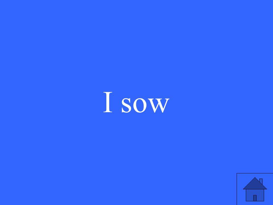 I sow
