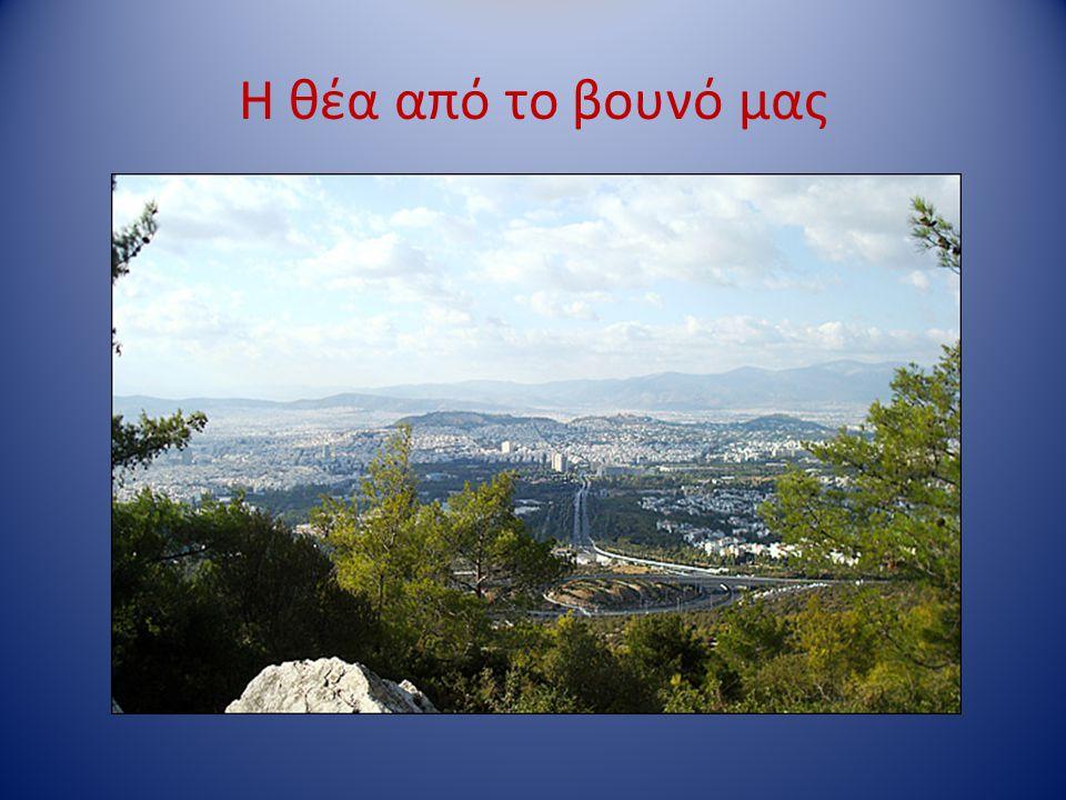 Η θέα από το βουνό μας