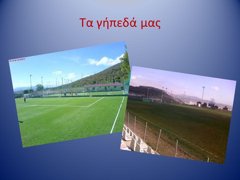 Τα γήπεδά μας