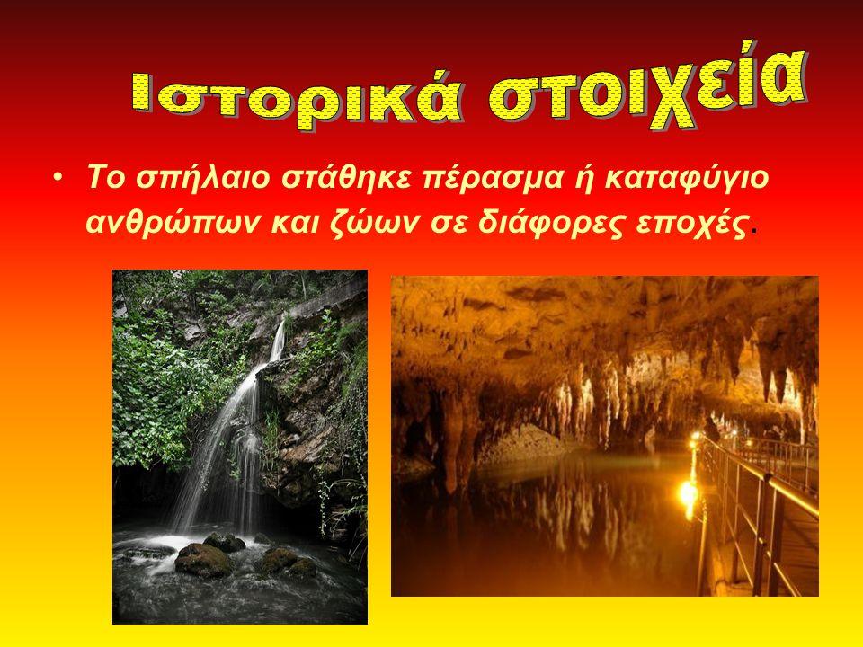 Το σπήλαιο στάθηκε πέρασμα ή καταφύγιο ανθρώπων και ζώων σε διάφορες εποχές.
