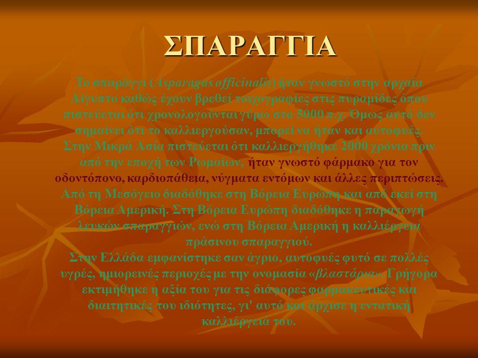 ΣΠΑΡΑΓΓΙΑ Το σπαράγγι (Asparagus officinalis) ήταν γνωστό στην αρχαία Αίγυπτο καθώς έχουν βρεθεί τοιχογραφίες στις πυραμίδες όπου πιστεύεται ότι χρονο