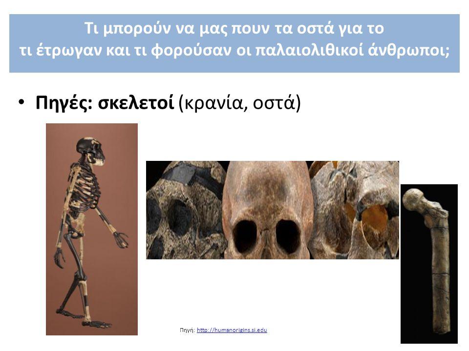 Πηγές: σκελετοί (κρανία, οστά) Πηγή: http://humanorigins.si.eduhttp://humanorigins.si.edu Τι μπορούν να μας πουν τα οστά για το τι έτρωγαν και τι φορο