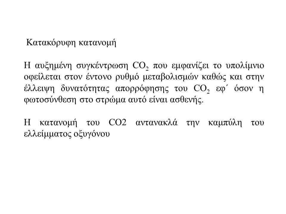 Kατακόρυφη κατανομή Η αυξημένη συγκέντρωση CO 2 που εμφανίζει το υπολίμνιο οφείλεται στον έντονο ρυθμό μεταβολισμών καθώς και στην έλλειψη δυνατότητας