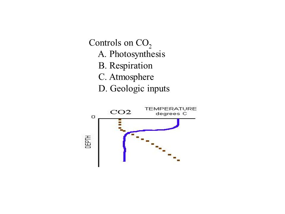 Controls on CO 2 A. Photosynthesis B. Respiration C. Atmosphere D. Geologic inputs