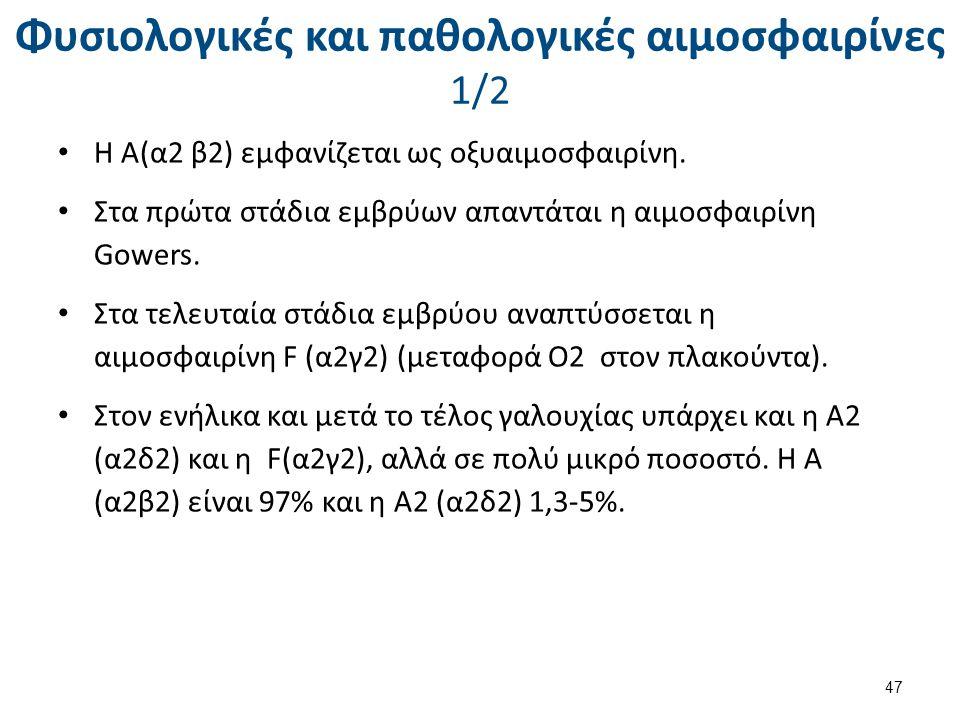 Φυσιολογικές και παθολογικές αιμοσφαιρίνες 1/2 Η Α(α2 β2) εμφανίζεται ως οξυαιμοσφαιρίνη. Στα πρώτα στάδια εμβρύων απαντάται η αιμοσφαιρίνη Gowers. Στ