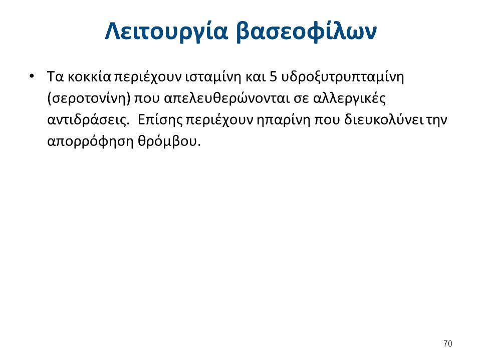Λειτουργία βασεοφίλων Τα κοκκία περιέχουν ισταμίνη και 5 υδροξυτρυπταμίνη (σεροτονίνη) που απελευθερώνονται σε αλλεργικές αντιδράσεις. Επίσης περιέχου