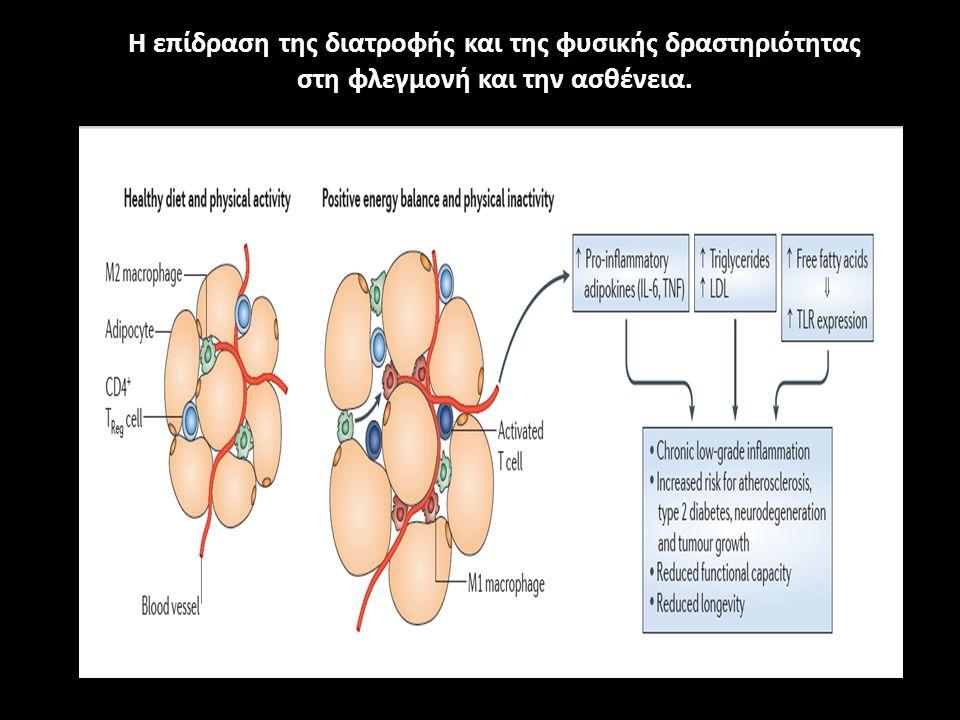 Β) ΑΝΤΙΦΛΕΓΜΟΝΩΔΗΣ ΜΗΧΑΝΙΣΜΟΣ