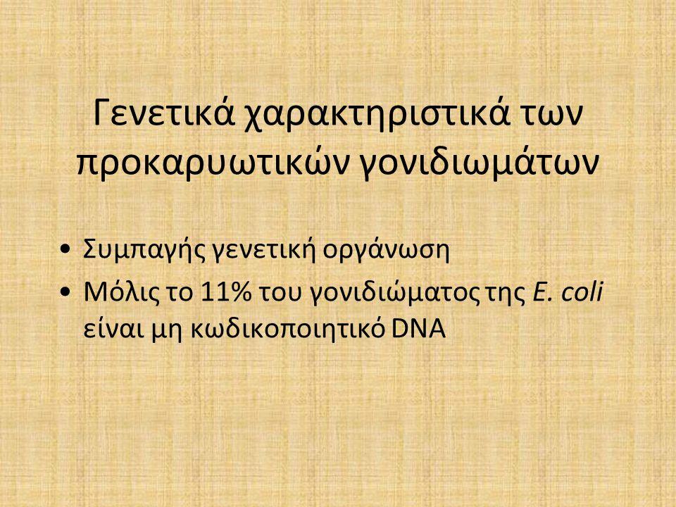 Γενετικά χαρακτηριστικά των προκαρυωτικών γονιδιωμάτων Συμπαγής γενετική οργάνωση Μόλις το 11% του γονιδιώματος της E. coli είναι μη κωδικοποιητικό DN