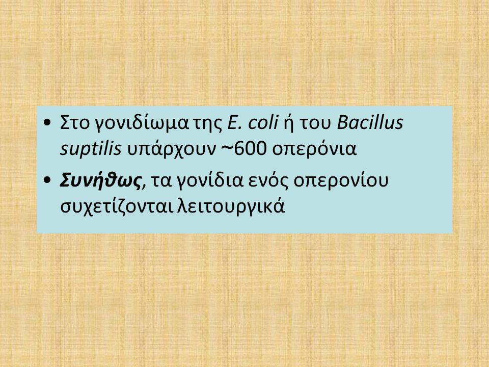 Στο γονιδίωμα της E. coli ή του Bacillus suptilis υπάρχουν ~ 600 οπερόνια Συνήθως, τα γονίδια ενός οπερονίου συχετίζονται λειτουργικά