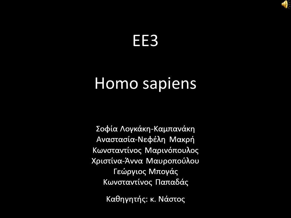 ΕΕ3 Homo sapiens Σοφία Λογκάκη-Καμπανάκη Αναστασία-Νεφέλη Μακρή Κωνσταντίνος Μαρινόπουλος Χριστίνα-Άννα Μαυροπούλου Γεώργιος Μπογάς Κωνσταντίνος Παπαδ