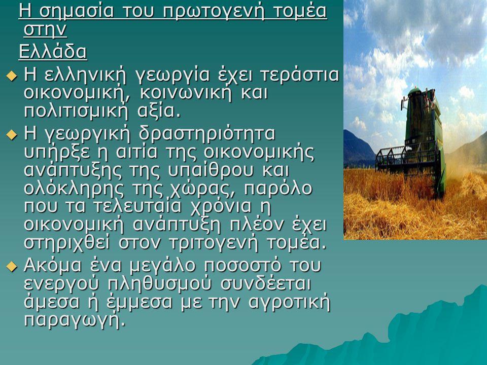 Η σημασία του πρωτογενή τομέα στην Η σημασία του πρωτογενή τομέα στην Ελλάδα Ελλάδα  Η ελληνική γεωργία έχει τεράστια οικονομική, κοινωνική και πολιτισμική αξία.