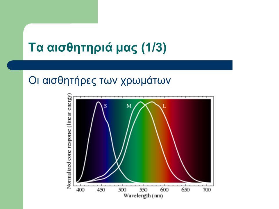 Τα αισθητηριά μας (1/3) Οι αισθητήρες των χρωμάτων