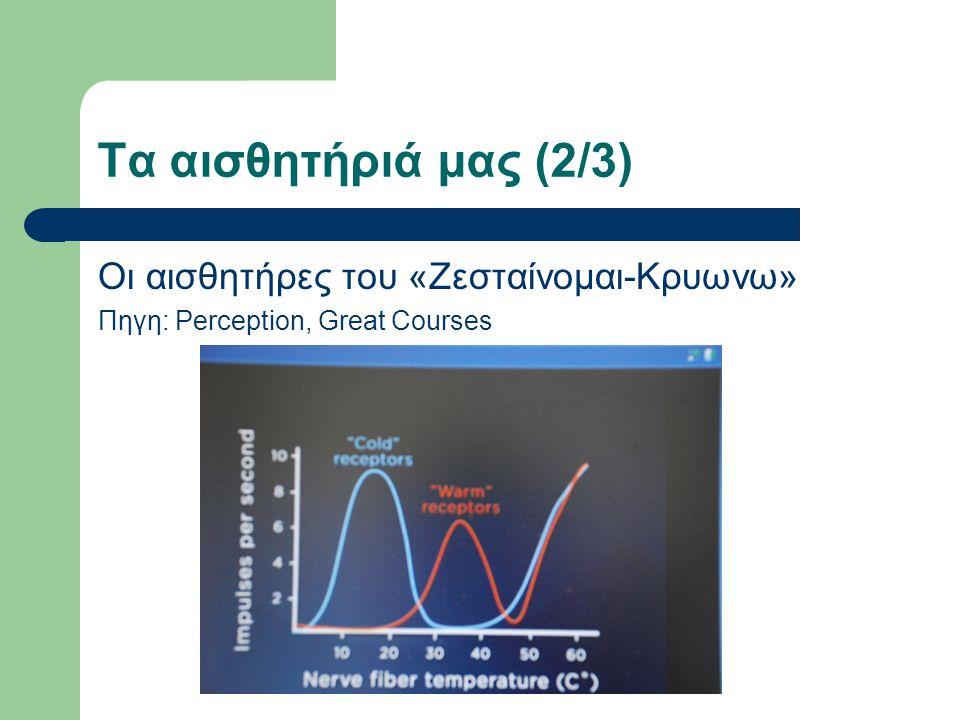 Τα αισθητήριά μας (2/3) Οι αισθητήρες του «Ζεσταίνομαι-Κρυωνω» Πηγη: Perception, Great Courses