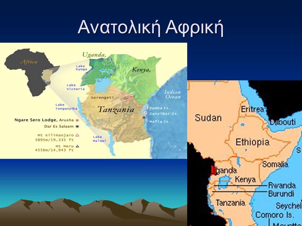 Το μεγάλο ρήγμα Στην κοιλάδα του μεγάλου ρήγματος, θεωρείται ότι έζησαν οι πρώτοι άνθρωποι Ανατολική Αφρική