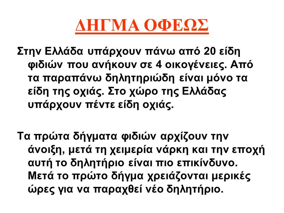 ΔΗΓΜΑ ΟΦΕΩΣ Στην Ελλάδα υπάρχουν πάνω από 20 είδη φιδιών που ανήκουν σε 4 οικογένειες. Από τα παραπάνω δηλητηριώδη είναι μόνο τα είδη της οχιάς. Στο χ