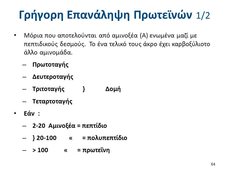 Γρήγορη Επανάληψη Πρωτεϊνών 1/2 Μόρια που αποτελούνται από αμινοξέα (Α) ενωμένα μαζί με πεπτιδικούς δεσμούς. Το ένα τελικό τους άκρο έχει καρβοξύλιοτο