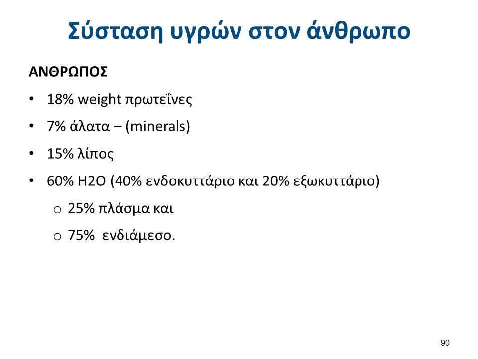 Σύσταση υγρών στον άνθρωπο ΑΝΘΡΩΠΟΣ 18% weight πρωτεΐνες 7% άλατα – (minerals) 15% λίπος 60% Η2Ο (40% ενδοκυττάριο και 20% εξωκυττάριο) o 25% πλάσμα κ