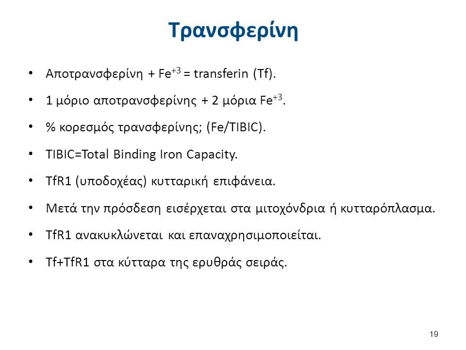 Τρανσφερίνη Αποτρανσφερίνη + Fe +3 = transferin (Tf). 1 μόριο αποτρανσφερίνης + 2 μόρια Fe +3. % κορεσμός τρανσφερίνης; (Fe/TIBIC). TIBIC=Total Bindin