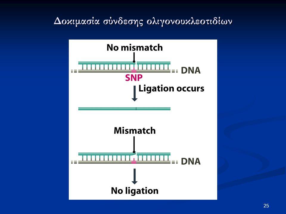 Δοκιμασία σύνδεσης ολιγονουκλεοτιδίων 25