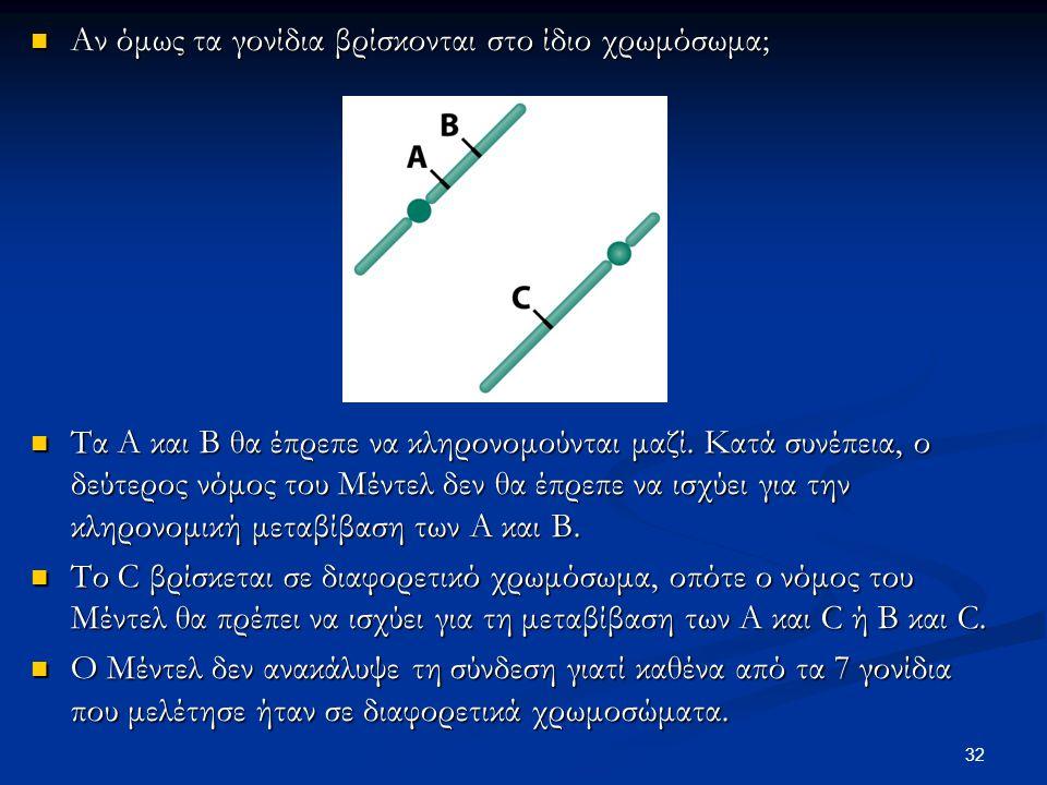 Αν όμως τα γονίδια βρίσκονται στο ίδιο χρωμόσωμα; Αν όμως τα γονίδια βρίσκονται στο ίδιο χρωμόσωμα; Τα Α και Β θα έπρεπε να κληρονομούνται μαζί. Κατά