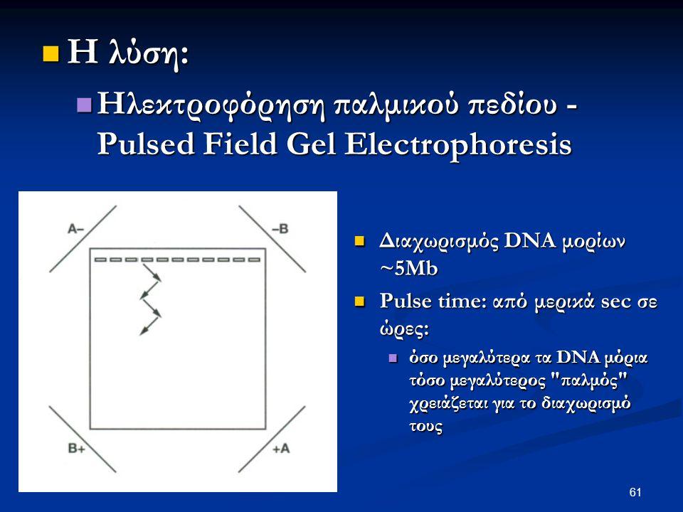 61 Η λύση: Η λύση: Ηλεκτροφόρηση παλμικού πεδίου - Pulsed Field Gel Electrophoresis Ηλεκτροφόρηση παλμικού πεδίου - Pulsed Field Gel Electrophoresis Δ