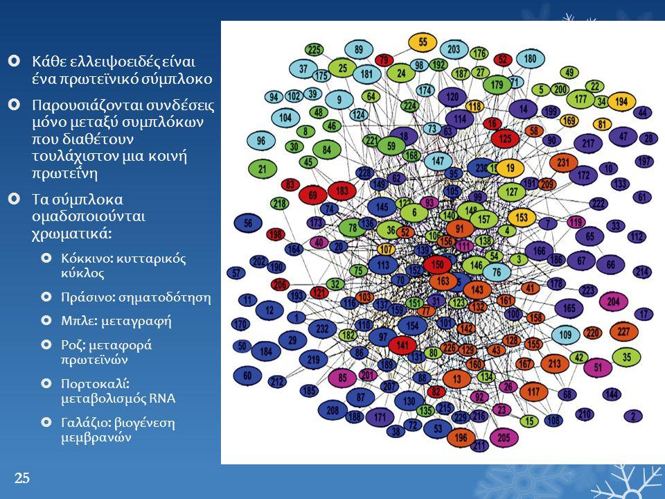  Κάθε ελλειψοειδές είναι ένα πρωτεϊνικό σύμπλοκο  Παρουσιάζονται συνδέσεις μόνο μεταξύ συμπλόκων που διαθέτουν τουλάχιστον μια κοινή πρωτεΐνη  Τα σ