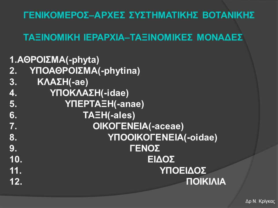 Spermatophyta Gymnospermae Magnoliophyta (Angiospermae) Liliopsida (μονοκότυλα) Magnoliopsida (δικότυλα) Alismatidae (Helobiae) Arecidae (Spadiciflorae) Κλάσεις Liliidae Zingiberidae Commelinidae Δρ Ν.