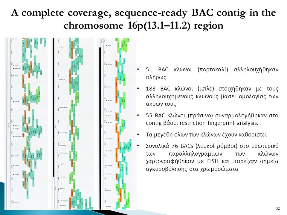 A complete coverage, sequence-ready BAC contig in the chromosome 16p(13.1–11.2) region 51 BAC κλώνοι (πορτοκαλί) αλληλουχήθηκαν πλήρως 183 BAC κλώνοι (μπλε) στοιχήθηκαν με τους αλληλουχημένους κλώνους βάσει ομολογίας των άκρων τους 55 BAC κλώνοι (πράσινο) συναρμολογήθηκαν στο contig βάσει restriction fingerprint analysis.