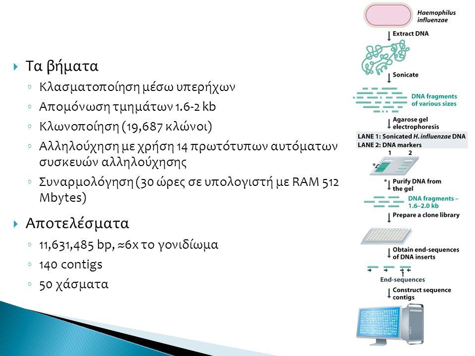  Τα βήματα ◦ Κλασματοποίηση μέσω υπερήχων ◦ Απομόνωση τμημάτων 1.6-2 kb ◦ Κλωνοποίηση (19,687 κλώνοι) ◦ Αλληλούχηση με χρήση 14 πρωτότυπων αυτόματων