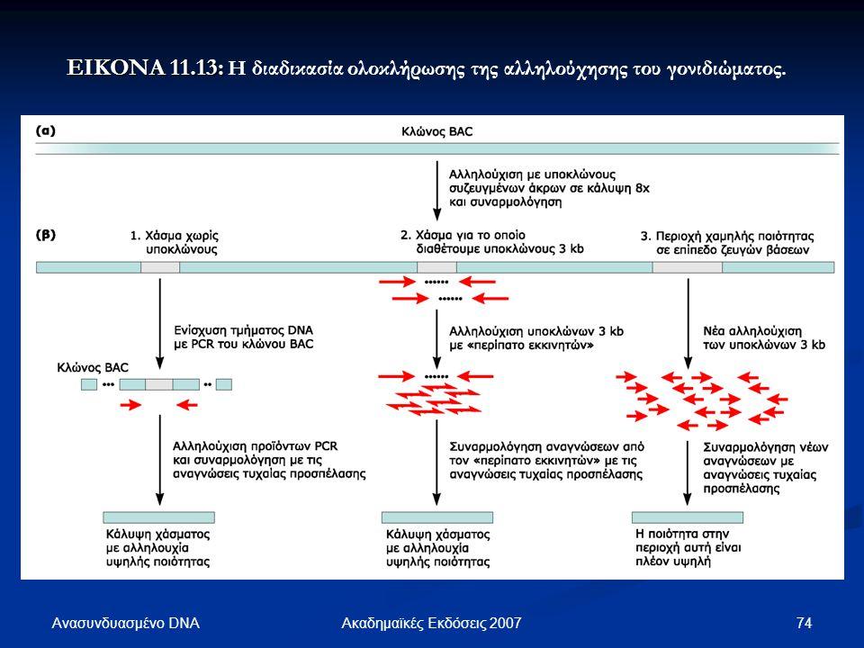 Ανασυνδυασμένο DNA 74Ακαδημαϊκές Εκδόσεις 2007 ΕΙΚΟΝΑ 11.13: ΕΙΚΟΝΑ 11.13: Η διαδικασία ολοκλήρωσης της αλληλούχησης του γονιδιώματος.