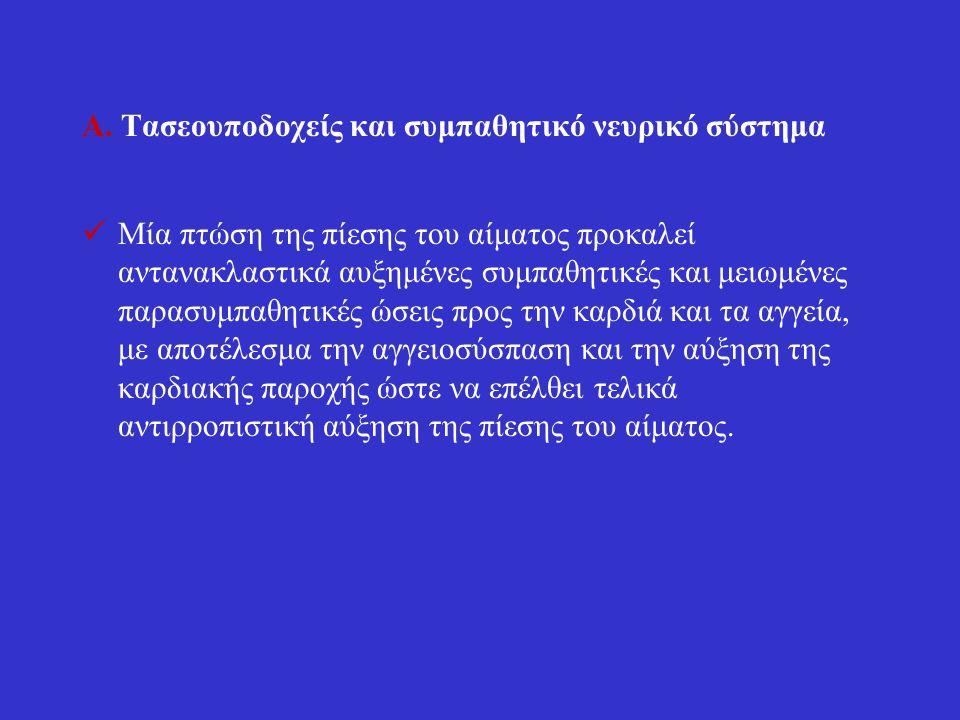 Β.Σύστημα ρενίνης – αγγειοτασίνης – αλδοστερόνης.