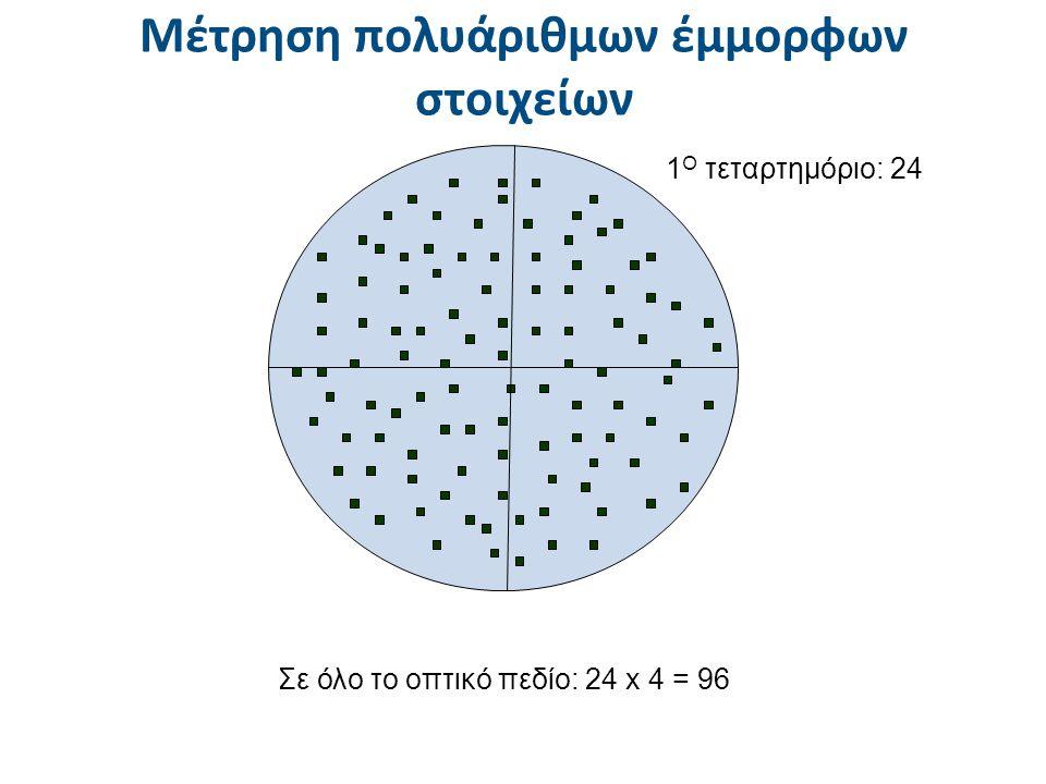 1 O τεταρτημόριο: 24 Σε όλο το οπτικό πεδίο: 24 x 4 = 96 Μέτρηση πολυάριθμων έμμορφων στοιχείων