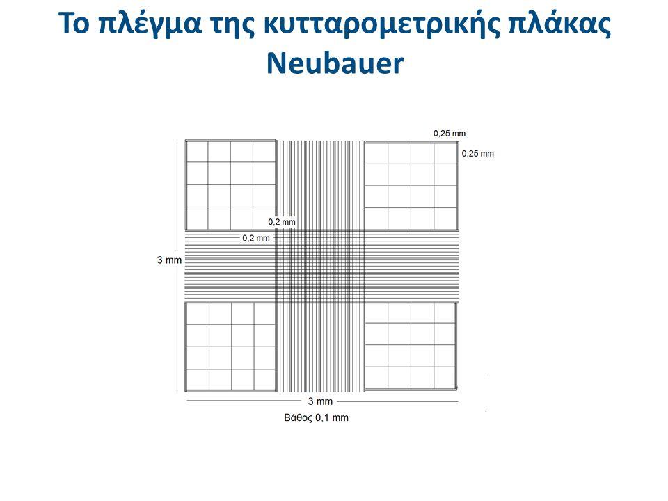 Το πλέγμα της κυτταρομετρικής πλάκας Νeubauer
