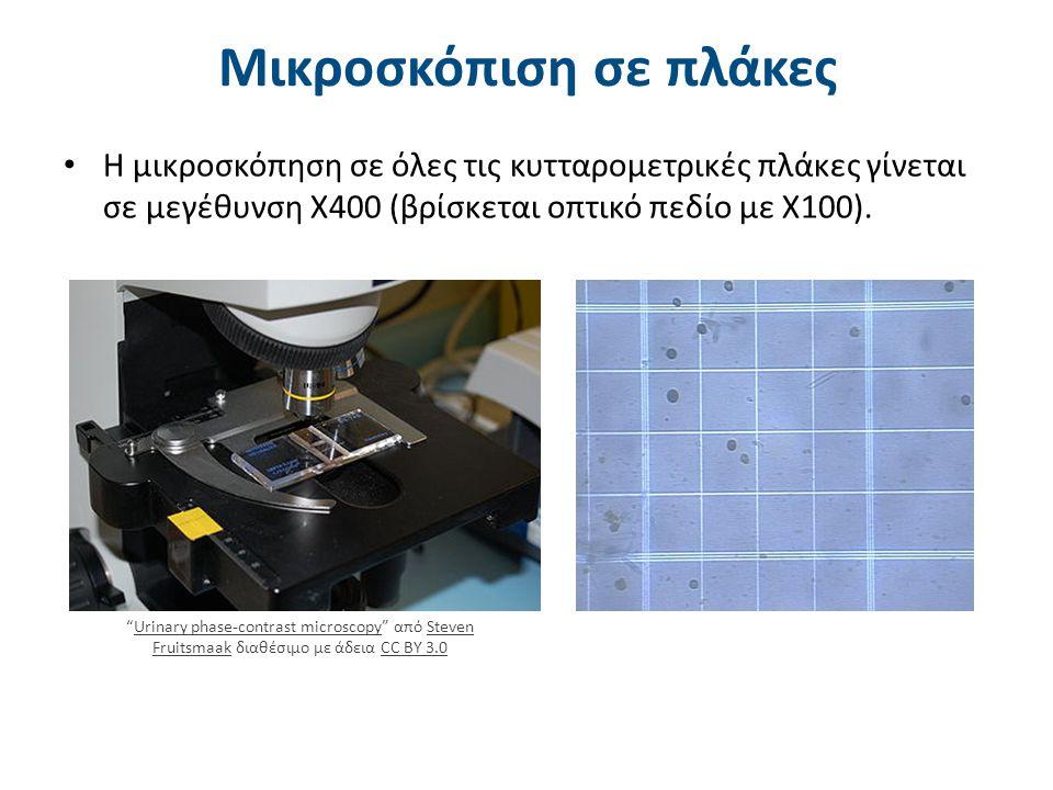 """Μικροσκόπιση σε πλάκες H μικροσκόπηση σε όλες τις κυτταρομετρικές πλάκες γίνεται σε μεγέθυνση Χ400 (βρίσκεται οπτικό πεδίο με Χ100). """"Urinary phase-co"""