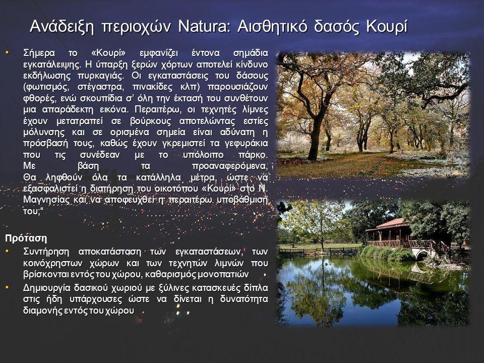 Ανάδειξη περιοχών Natura: Αισθητικό δασός Κουρί Σήμερα το «Κουρί» εμφανίζει έντονα σημάδια εγκατάλειψης. Η ύπαρξη ξερών χόρτων αποτελεί κίνδυνο εκδήλω