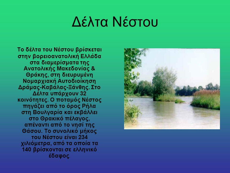 Δέλτα Νέστου Το δέλτα του Νέστου βρίσκεται στην βορειοανατολική Ελλάδα στα διαμερίσματα της Ανατολικής Μακεδονίας & Θράκης, στη διευρυμένη Νομαρχιακή